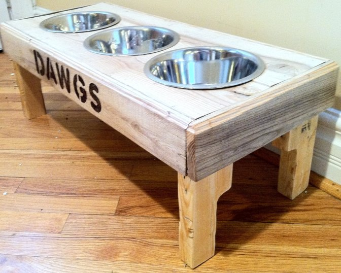 Should I raise my dog's bowls? (video)